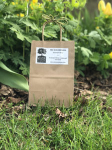 """Paper bag with green bow. Label says """"Free Wildflower Seeds"""""""